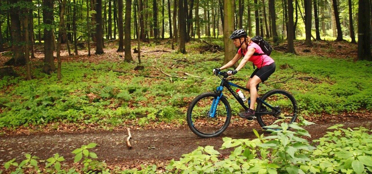 MTB Fahrtechnik Kurs für Einsteiger in Nürnberg - Mountainbike Basic - Rock my Trail Bikeschule