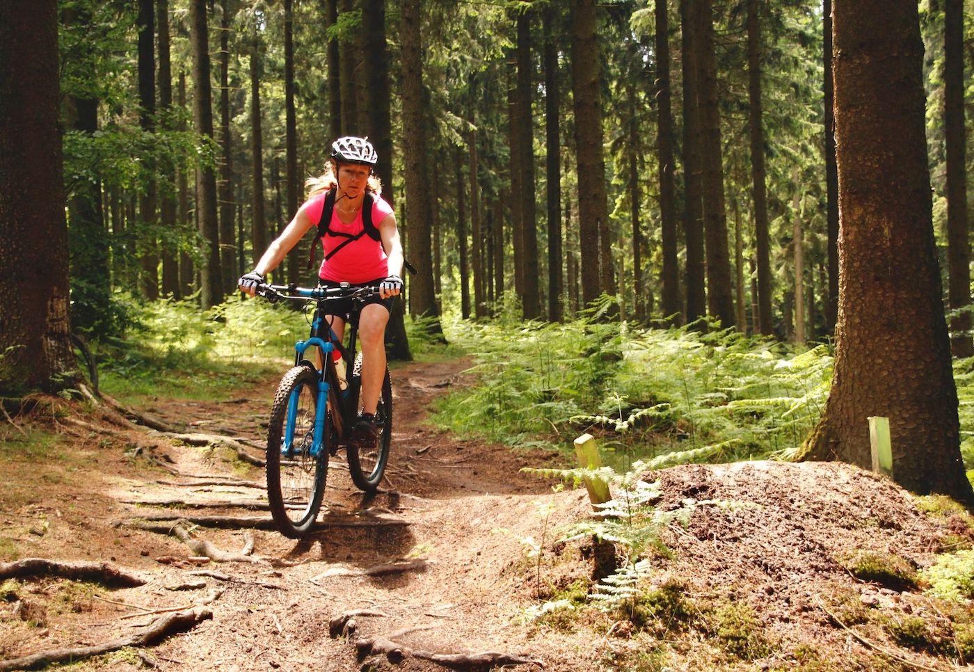 MTB eBike Kurse in Darmstadt - Frankenstein Fahrtechnik Training Rock my Trail Bikeschule