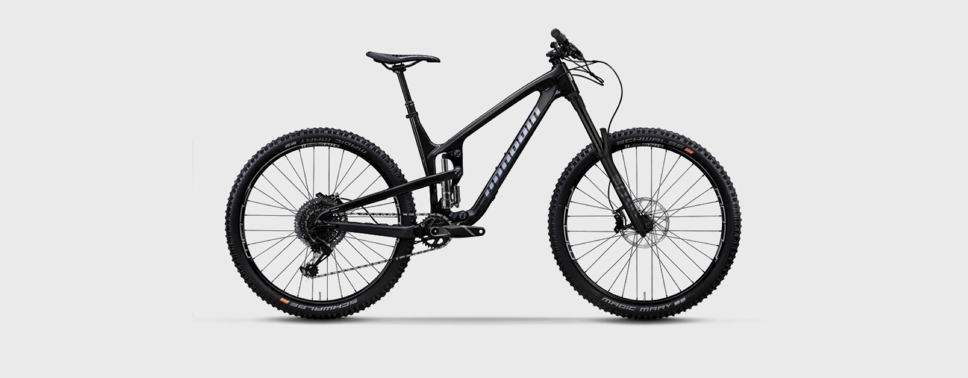 Bike Verleih Gummersbach Propain Bikes Testcenter NRW Tyee 6 - CF - XL - 29 - Raw - 1920x750